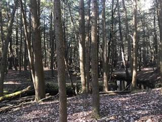 Land for sale in 35 Heron Lane, Brookside, Pocono Pines, PA, 18350