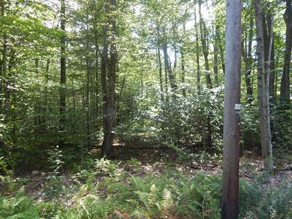 Lots And Land for sale in 1013 White Pine Dr, Pocono Lake, PA, 18347