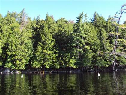 Lots And Land for sale in 2430 Woods Point, Long Lake, NY, 13436