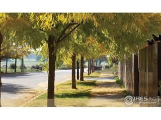 Land for sale in 897 Neon Forest Cir, Longmont, CO, 80504