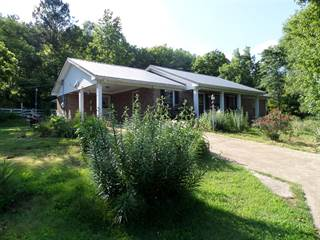 Single Family for sale in 101 Hays Rd, Goodspring, TN, 38460