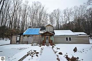 Single Family for sale in 157 E Forest Trail, Leroy, MI, 49655