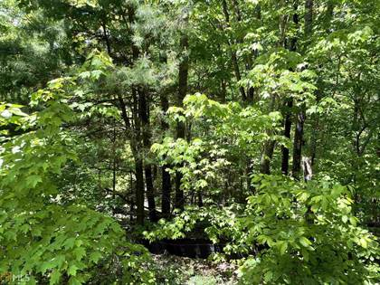 Lots And Land for sale in 0 Teel Mountain Lane 42, Cleveland, GA, 30528