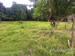 Other Real Estate for sale in Salinitas , Playa Grande, Guanacaste