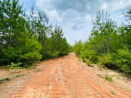 Lots And Land for sale in 000 Jessie Stogner Rd, Sandy Hook, MS, 39478