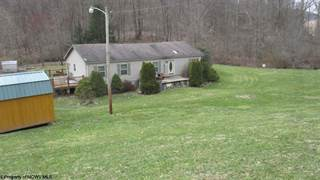 Single Family for sale in 528 Gaines Road, Rock Cave, WV, 26234