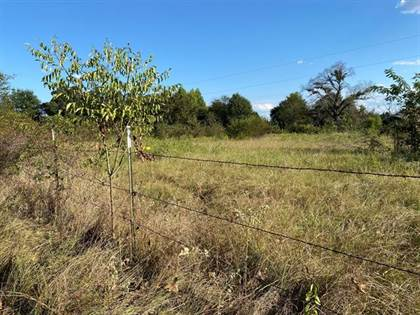 Lots And Land for sale in Tbd VZ County Road 4513 Road, Ben Wheeler, TX, 75754