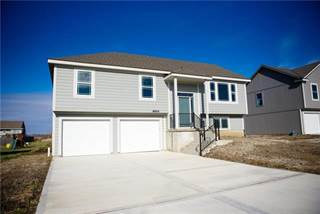 Single Family for sale in 9800 E 222nd Street, Peculiar, MO, 64078