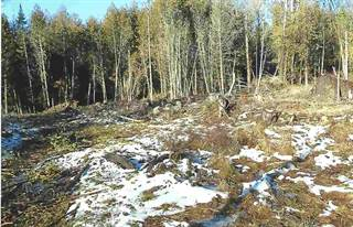 Land for sale in Lot 3C Coits Pond Road, Cabot, VT, 05647