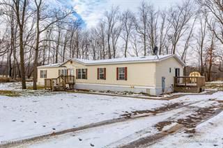Single Family for sale in 6396 Kyser Road, Greater Saranac, MI, 49331