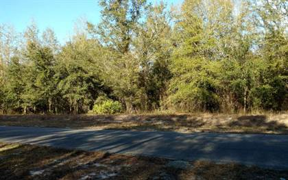 Lots And Land for sale in TOMS CREEK RD, Fargo, GA, 31631
