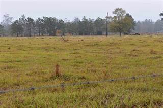 Land for sale in 1028 CR 721, Buna, TX, 77612