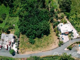 Lots And Land for sale in Lot Bo. Rio Grande, Rincon, Sheppton, PA, 18248