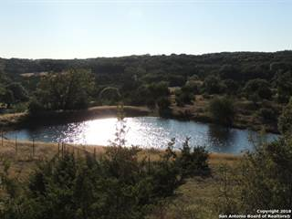 Farm And Agriculture for sale in 2901 Canyon Heights, Spring Branch, TX, 78070