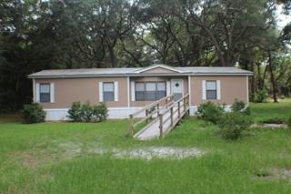 Residential Property for sale in 7810 167TH PL, Trenton, FL, 32693