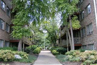 Apartment for rent in Highland Terrace - 2 Bed 2 Bath SMALL, Knoxville, TN, 37916