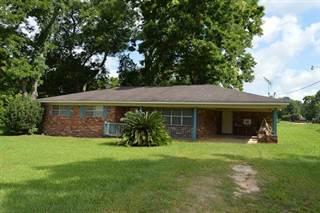 Single Family for sale in 15 Ward, Damascus, GA, 39841