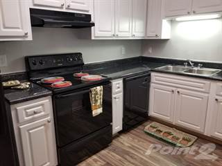 Apartment for rent in Palms at Palisades, Brandon, FL, 33510