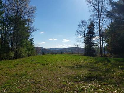 Lots And Land for sale in 0 Water Tower Road, Greater Millerton, PA, 16929