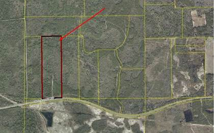 Lots And Land for sale in HWY 27, Mayo, FL, 32066