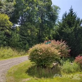 Lots And Land for sale in Bailey Branch Road, Burnsville, NC, 28714