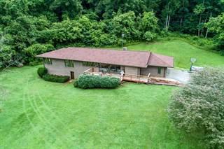 Single Family for sale in 22433 North Fork River Road, Abingdon, VA, 24210