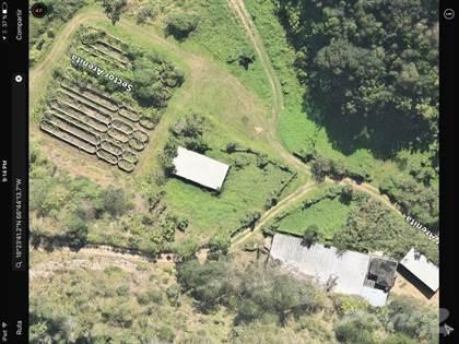Farm And Agriculture for sale in Bo. Esperanza, Arecibo, Arecibo, PR, 00612
