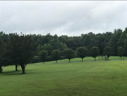 Lots And Land for sale in Lot 27 Dunraven Drive, Rineyville, KY, 40162