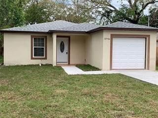 Single Family for sale in 10706 N ANNETTE AVENUE, Tampa, FL, 33612