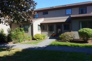 Townhouse for sale in 420 North Hemlock Ln, Williamstown, MA, 01267