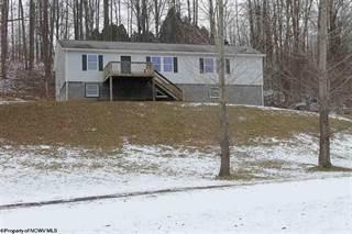 Single Family for sale in 1571 Lanesville Road, Davis, WV, 26260