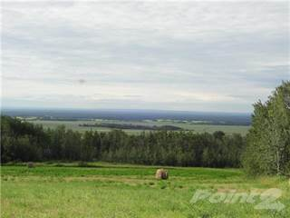 Land for sale in NW 16 72 4 W6 ..., Grande Prairie, Alberta