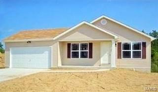 Single Family for sale in 314 Hawks Perch Place, Hillsboro, MO, 63050