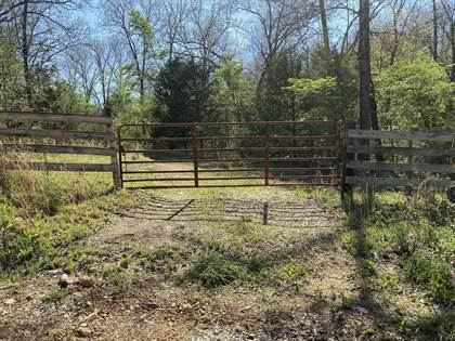 Farm And Agriculture for sale in 000 County Road 330, Tecumseh, MO, 65760
