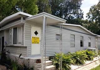 Other Real Estate for sale in 30700 US Highway 19 N, 42, Palm Harbor, FL, 34684