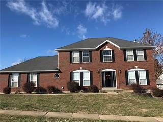 Single Family for sale in 1700 Wild Goose, Saint Charles, MO, 63303