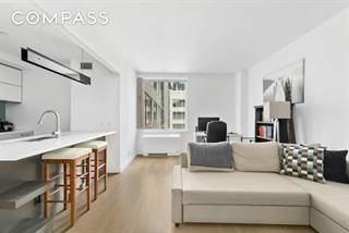 Condo for rent in 22 North 6th Street 8N, Brooklyn, NY, 11211