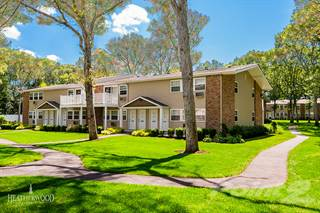Apartment for rent in Pinewood Village - The Junior, Coram, NY, 11727