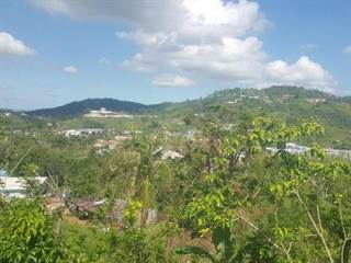 Single Family for sale in Lot 7 853, Barrazas, PR, 00987
