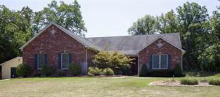 Single Family for sale in 10100 Kelemen Farms, Dittmer, MO, 63023