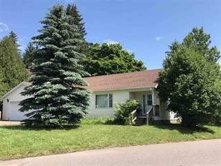 Single Family for sale in 1409 Front, Lake Linden, MI, 49945