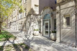 Apartment for rent in 1318-24 E. Hyde Park Blvd. | 1319-25 E. Madison Pk. - 1 Bed | 1 Bath (B2), Chicago, IL, 60615