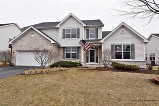 Single Family for sale in 12717 Grande Poplar Circle, Plainfield, IL, 60585
