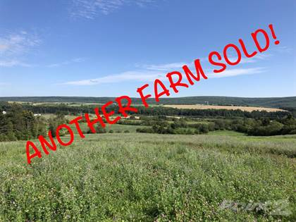 Farm And Agriculture for sale in Knightville Road, Knightville, New Brunswick