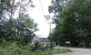Single Family for sale in 8044 Saunders Hill Rd, Belfast, NY, 14711