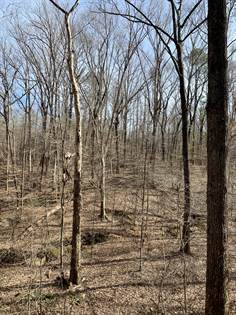 Lots And Land for sale in Hwy 15, Ackerman, MS, 39735