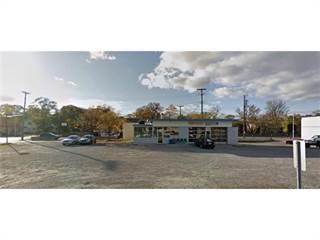 Comm/Ind for sale in 1005 N MAIN Street, Royal Oak, MI, 48067