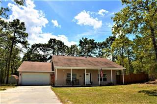 Single Family for sale in 11324 FLOCK AVENUE, High Point, FL, 34613