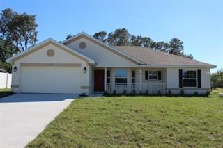 Single Family for sale in 11126 MAYFLOWER ROAD, Spring Hill, FL, 34608