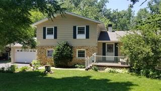 Single Family for sale in 526 Stevens Court, Dundee, IL, 60118